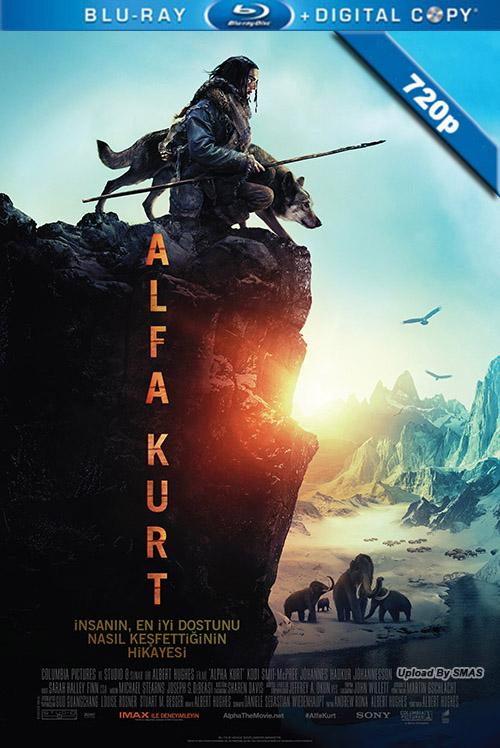 Alfa Kurt | Alpha | 2018 | 720p | HDCAM | Türkçe Altyazılı | 1 GB | Tek Link