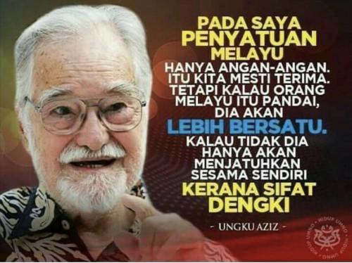 Prof Diraja Ungku Aziz