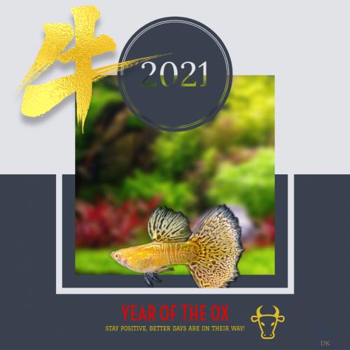 cny2021 (Copy)